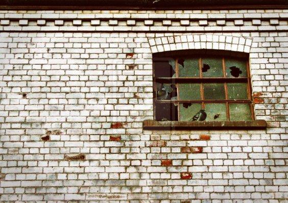 Broken window birdies wait by xflorian @ deviantart.net