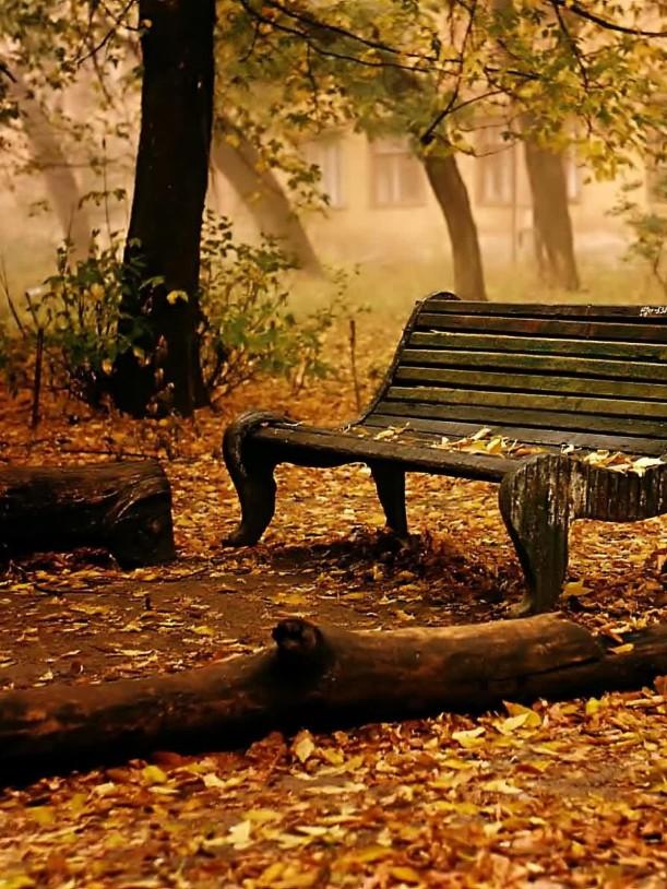 park-in-autumn