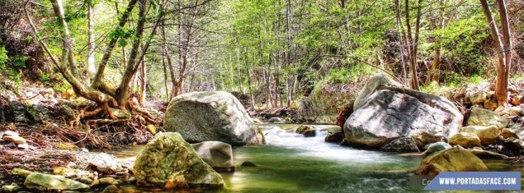 lovely_forrest_river_portadas_para_facebook-851x315