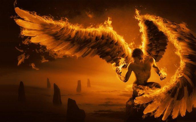 Beautiful-art-design-wings-on-fire